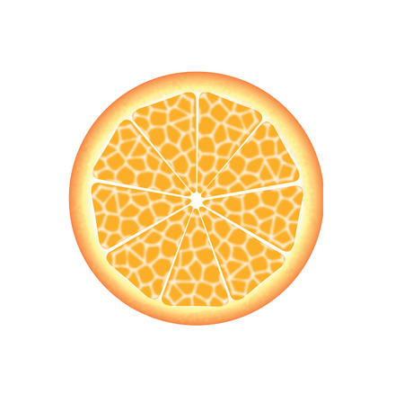 slice of fresh orange Vector