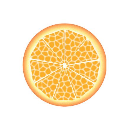 slice of fresh orange Stock Vector - 4838570