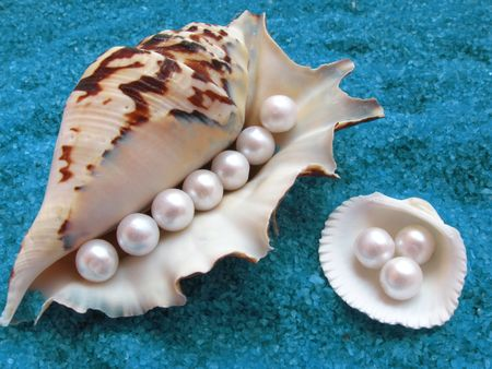 bordered: Big shell and small shall with pearls on interesting blue sandy background