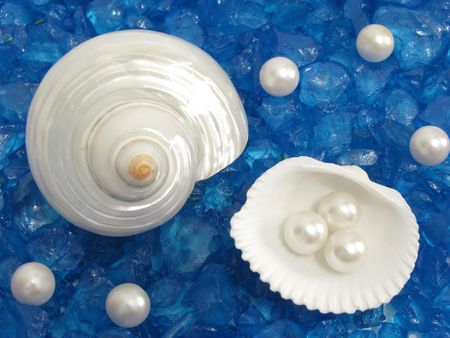 bordered: Shells and pearls on interesting blue sandy background