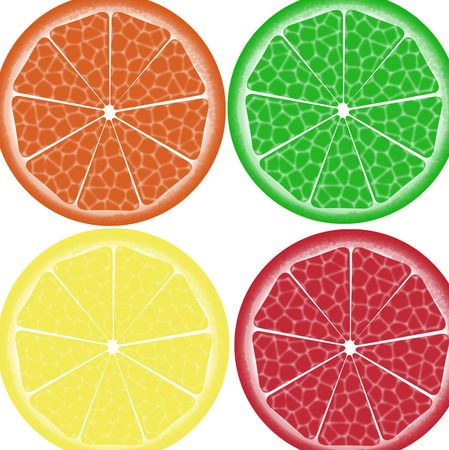 Sliced citrus fruit Stock Photo - 7269901