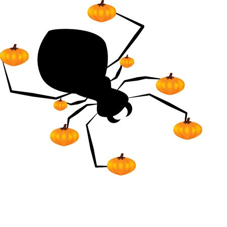 spider and pumpkin Stock Photo - 7985961