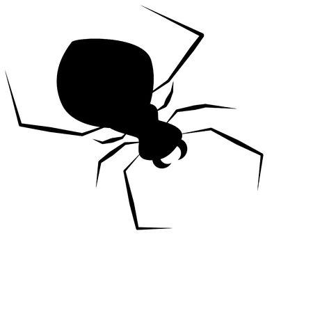 springe: spider