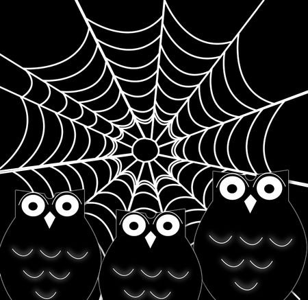 owl and spider web- halloween concept photo