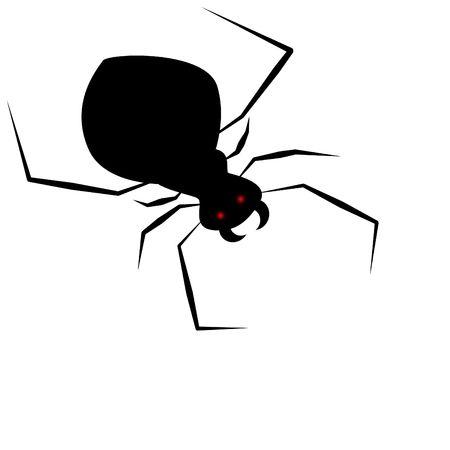 springe: big spider
