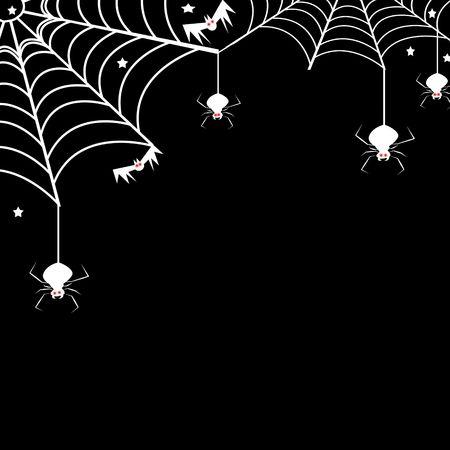 springe: spider web