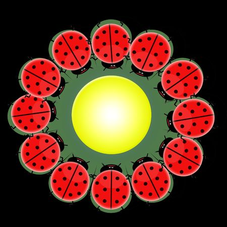 ladybird make flower shape photo