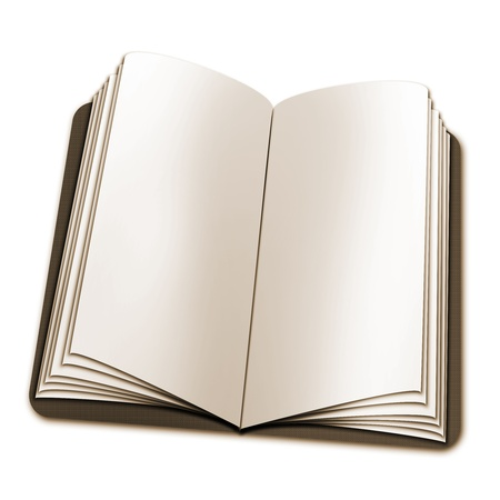open book with blank Stock Photo - 9710628