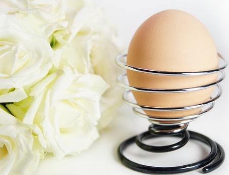 close up of egg  photo