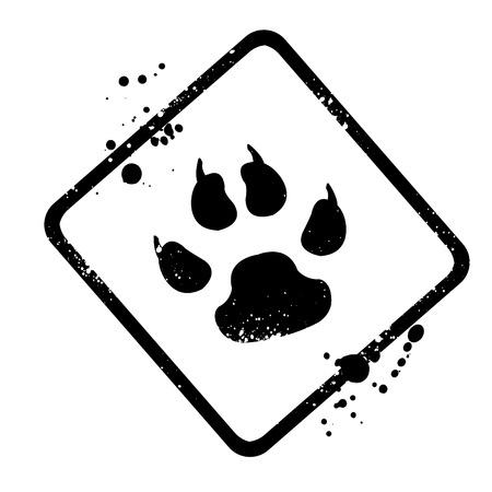animal footprints  photo