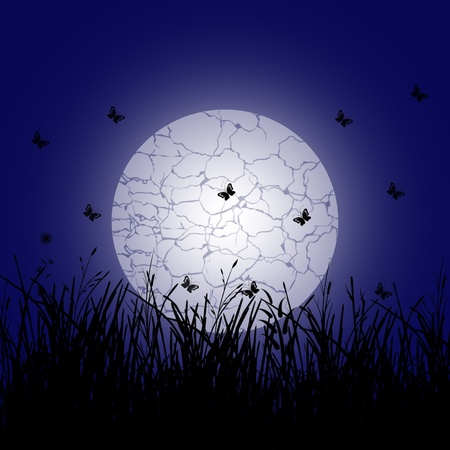 branch plant in the meadow and full moon and butterfly photo
