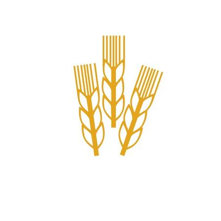 wheat icon photo
