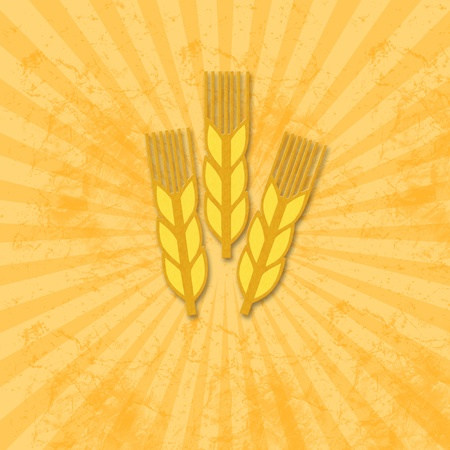wheat icon on grunge pattern photo