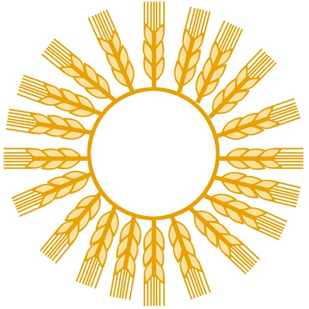 wheat make sun shape photo