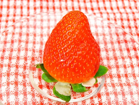 half stuff: fresh strawberry