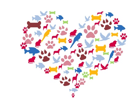 Love for pets Stock Photo - 14701360