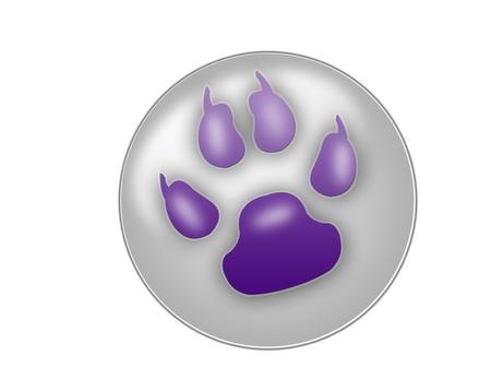 paw icon photo