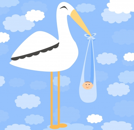 Boy Card - A stork delivering a cute boy photo