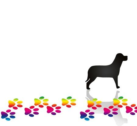 paw prints: Paw Prints and dog Stock Photo