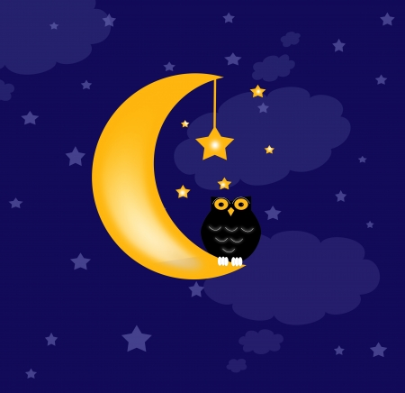 blue background with clouds, the new moon and the stars, and owl photo
