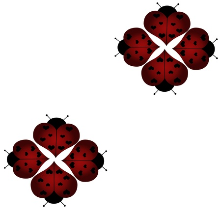 ladybug - ladybird background photo