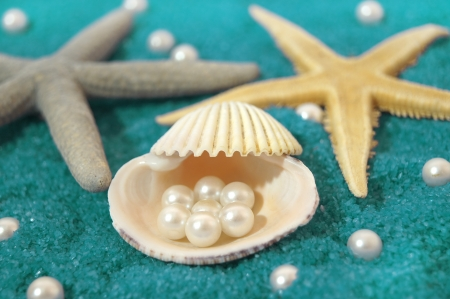 pearl and shells photo