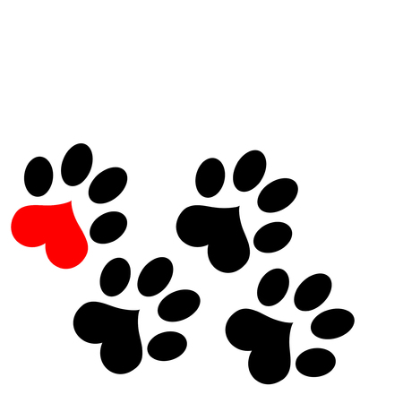 wild cat: paw prints with hearts Stock Photo