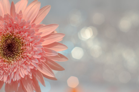 antique background: Flowers Stock Photo