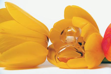 perfume in tulip