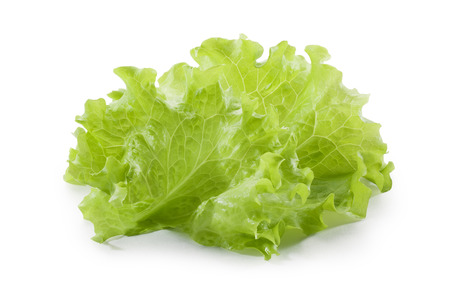 Lettuce salad isolated on white background, food concept 写真素材
