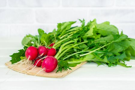 Bunch of round radishes with tops on the white table. White brick wall in the background. Radish is ready for cooking.