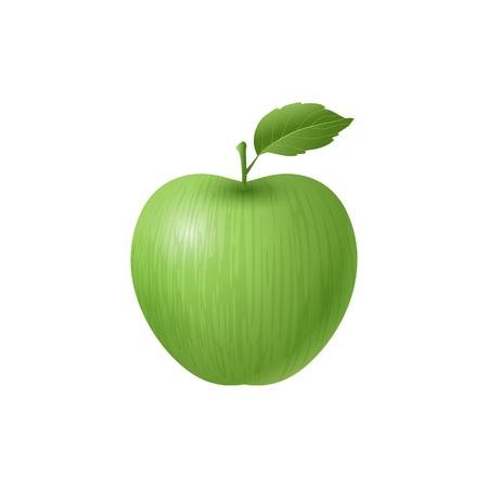 Green apple illustration on a white background 矢量图像