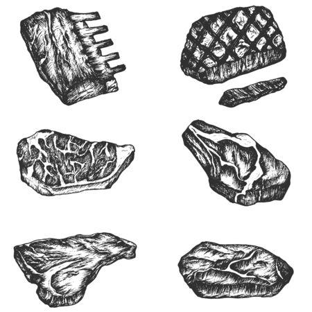 Filetes de carne conjunto de vectores dibujados a mano, conjunto de carne de boceto. Ilustración de vector