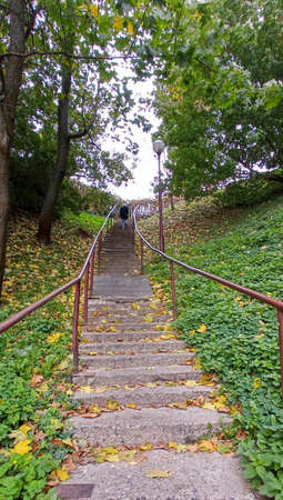 A steep and high staircase climbs the mountain. A girl is walking up the stairs. Around trees with yellow leaves. Leaves lie on the steps.