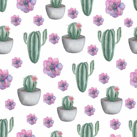 Seamless pattern with cactus  in pot and purple succulents. Hand drawn illustration in trendy cute cartoon style.Mexican style background perfect for fabric textile and wrapping paper.