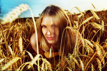 looking out: Pretty girl is looking out of the wheat field on the sunset background.