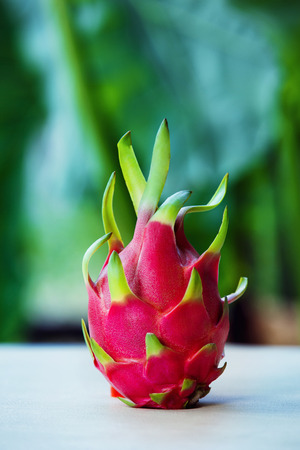dragon vertical: Vertical image of ripe healthy raw dragon fruit at green natural background.