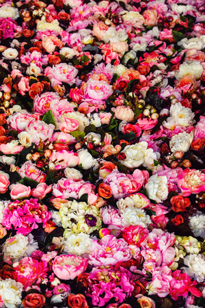 Vertical image of beautiful flowers wall background with amazing red and white roses.