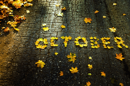 october: Word October made of yellow autumn leaves at asphalt background.