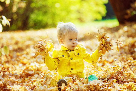 yellow jacket: Little happy boy in yellow jacket is playing with leaves at golden autumn park background.