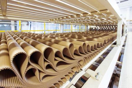 carton: Imagen del primer de la fila de cartón plisado en el fondo de la fábrica.