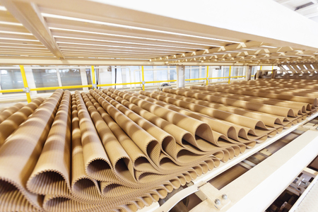 pleat: Closeup image of pleat cardboard row at factory background.