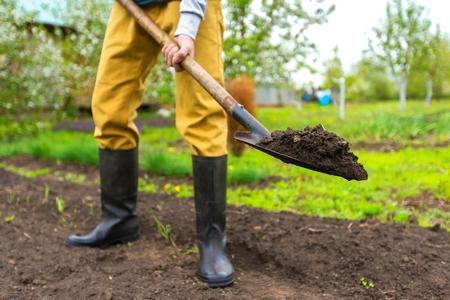 El jardinero está cavando la tierra con una pala en el fondo del verde de la primavera al aire libre. Foto de archivo - 78542215