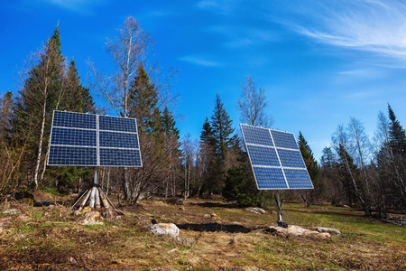 voltaic: Solar batteries at spring Russian sunny forest background. Stock Photo