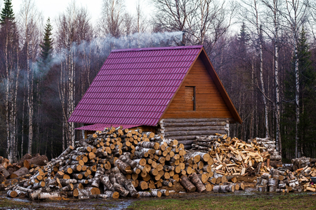 Rural Russian wooden house with firewood logs and spring forest background.