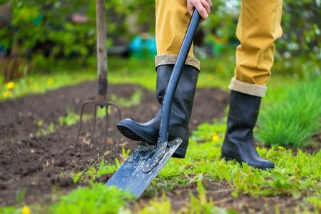 Rolnik kopie ziemię z łopatą na wiosnę zielone tło zewnątrz.