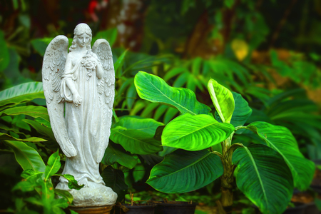 Marble statue of angel with closed eyes at green summer garden background. Stock Photo