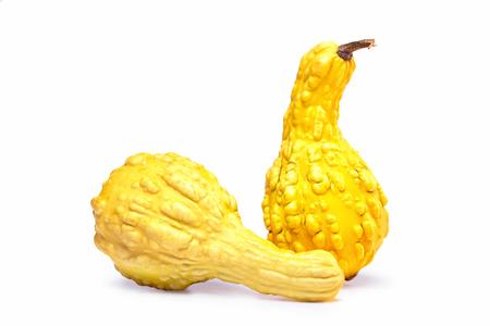 Dos calabazas decorativas amarillas con saturación camino aislado en fondo blanco. Foto de archivo