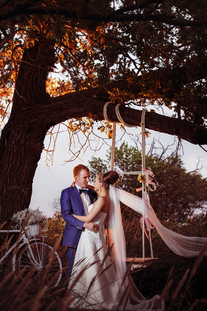 Elegant groom is embracing beautiful bride at a summer field with a swing on tree and bicycle nearby background. Kho ảnh