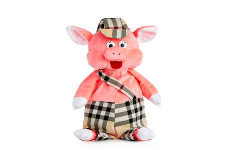Stuffed toy pig in cap and pants isolated at white background.
